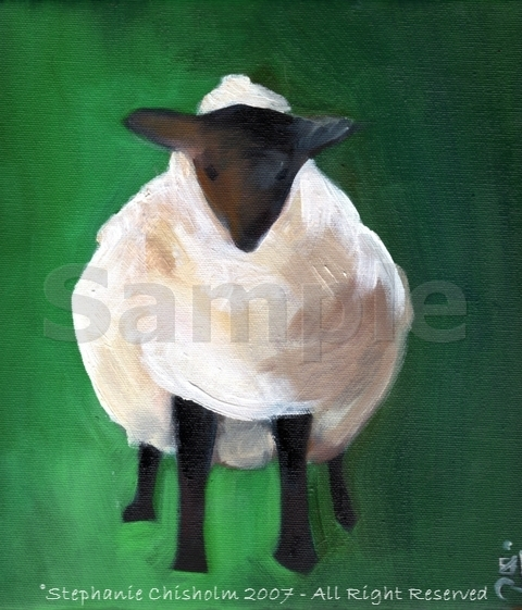 Black Faced Sheep  - How did this Sheep get in here?   Ohhh I forgot I love sheep